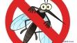 Уничтожитель насекомых Hilton до 100 кв.м. 0